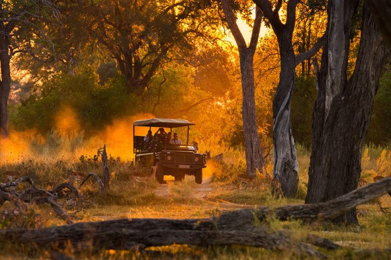 Moremi, Botswana,Efimova Anna-shutterstock_344531177. Travel Africa magazine